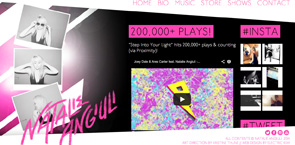 Web Design for Musicians   Electric Kiwi